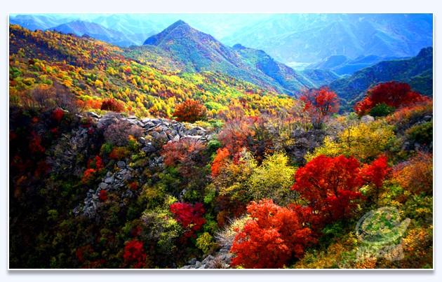喇叭沟门原始森林国家公园