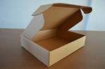 众诺包装飞机盒式黄品箱06